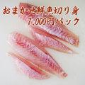 【鮮魚通販】能登・輪島の鮮魚7000円切り身パック(刺身)