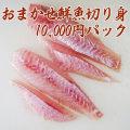 【鮮魚通販】能登・輪島の鮮魚10,000円切り身パック(刺身)