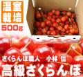高級さくらんぼ(温室栽培)500g