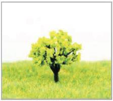 ランドスケープ樹木