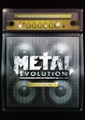 metal_evolution.jpg