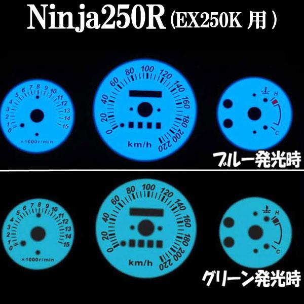 Ninja250R ELメーター