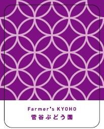 清澄白河フジマル醸造所/Farmer's KYOHO ロゼ 菅谷ぶどう園 2016(ロゼ)