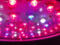 室内・ハウス栽培 LED植物育成灯 HG-LA90γ2.1