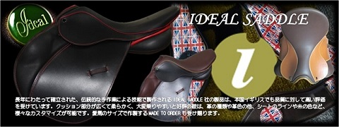 IDEAL SADDLE