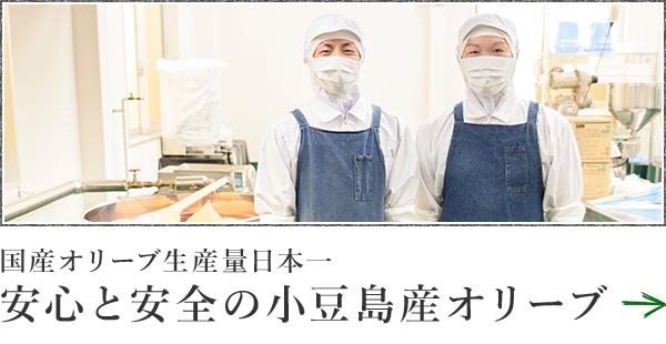 国産オリーブ生産量日本一 安全と安心の小豆島産オリーブ