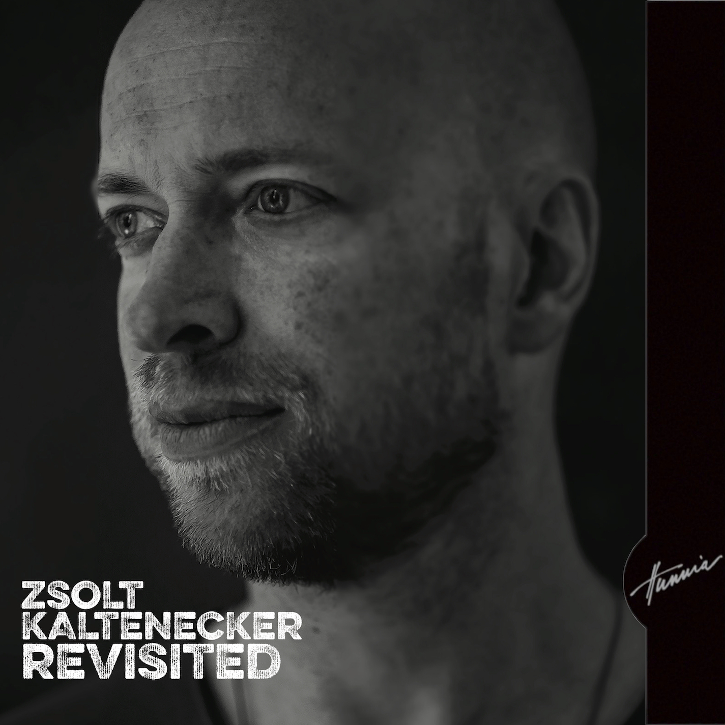 Kaltenecker Zsolt: Revisited 【予約受付中】