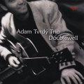 Adam Tvrdy Trio: Doublewell