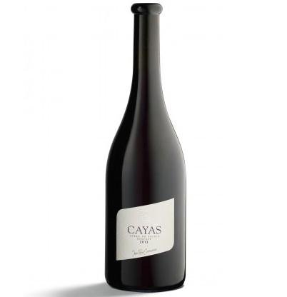 【スイス・ヴァレー州から日本初お目見え!!シラー100%スイス銘醸赤ワイン】Cayas カイヤス, 2013, 750ml