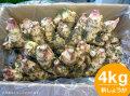 �����礦��4kg