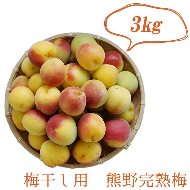 熊野有機生完熟梅(生梅) 梅干し作り専用の生梅(産直品) 3kg【冷蔵配送】