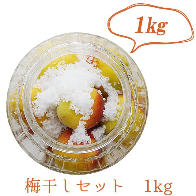 熊野有機生完熟梅(生梅) 梅干し作り専用生梅 1kg+天然海水塩(200g×1袋)【冷蔵配送】