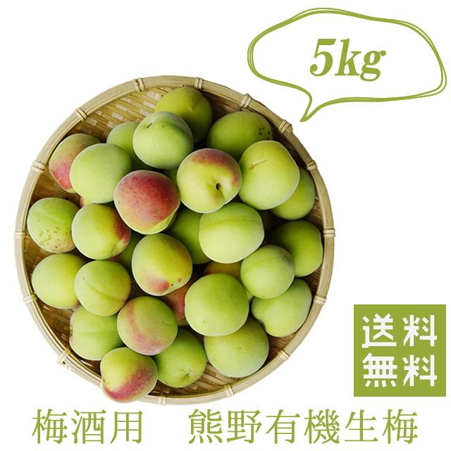 熊野有機栽培生梅(青梅) 梅酒用の生梅(紀州 和歌山県産) 5kg【冷蔵配送料無料】