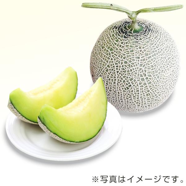 九州産マスクメロン(温室・1玉)