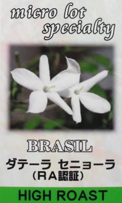 ブラジル ダテーラ セニョーラ(RA認証)(中浅煎り・ハイロースト) コーヒー豆