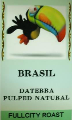 ブラジル ダテーラ パルプトナチュラル(中深炒り・フルシティロースト) コーヒー豆