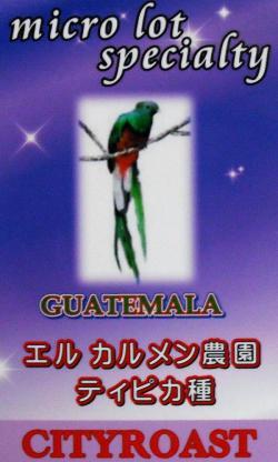 グァテマラ エル カルメン農園 ティピカ(シティロースト・中煎り)(シティロースト・中煎り) コーヒー豆