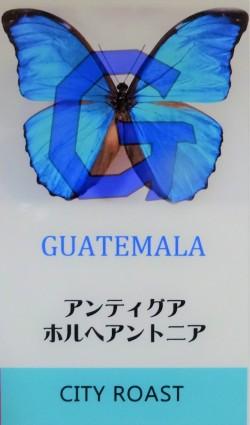 グアテマラ ホルヘアントニア (シティロースト=中煎り) コーヒー豆