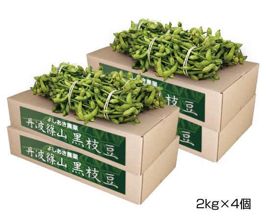 黒枝豆2束×4箱