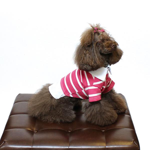 チノフィロ Cinofilo ボーダー切り替え刺繍シャツ 【犬服 犬グッズ ドッグウェア おしゃれ イタグレ 】