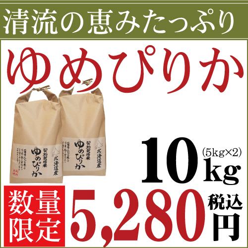 28年産 北海道産 清流ゆめぴりか 10kg