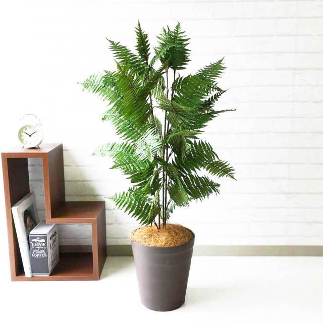 【PG086 ハワイアンシダー H100cm / ポリプロピレン鉢】人工観葉植物 造花 フェイクグリーンインテリア アーティフィシャルグリーン