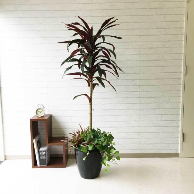 【PG089 ドラセナレッド H150cm / ポリプロピレン鉢】人工観葉植物 造花 フェイクグリーンインテリア アーティフィシャルグリーン