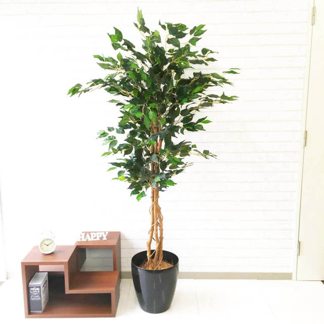 【PG091 ベンジャミンフィカスツリー H170cm / ポリプロピレン鉢】人工観葉植物 造花 フェイクグリーンインテリア アーティフィシャルグリーン