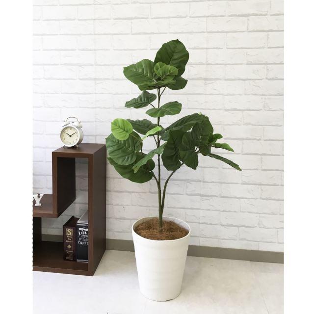 【PG094 ウンベラータ H100cm  / ポリプロピレン鉢】人工観葉植物 造花 フェイクグリーンインテリア アーティフィシャルグリーン