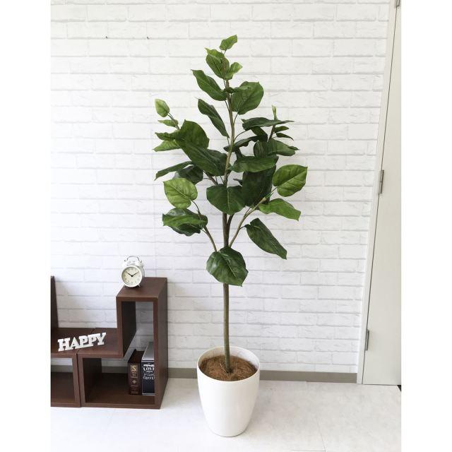 【PG096 ウンベラータ H160cm  / ポリプロピレン鉢】人工観葉植物 造花 フェイクグリーンインテリア アーティフィシャルグリーン