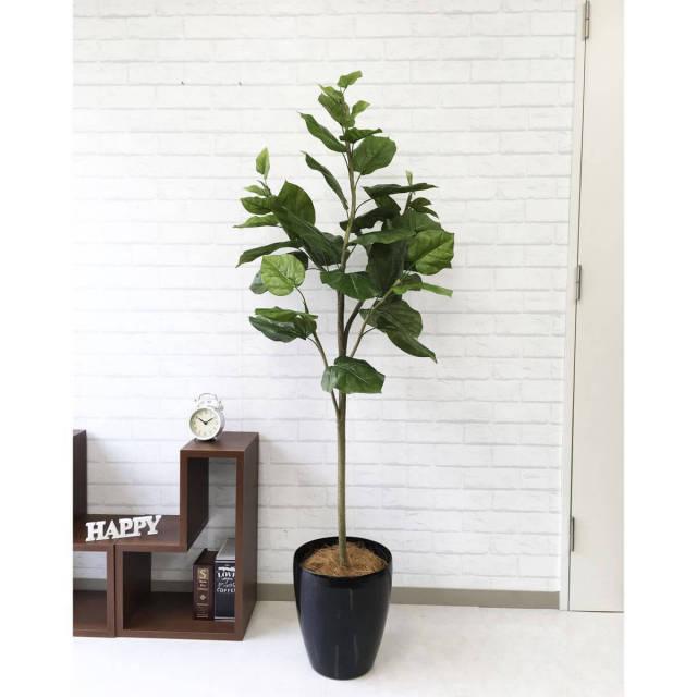 【PG097 ウンベラータ H160cm  / ポリプロピレン鉢】人工観葉植物 造花 フェイクグリーンインテリア アーティフィシャルグリーン