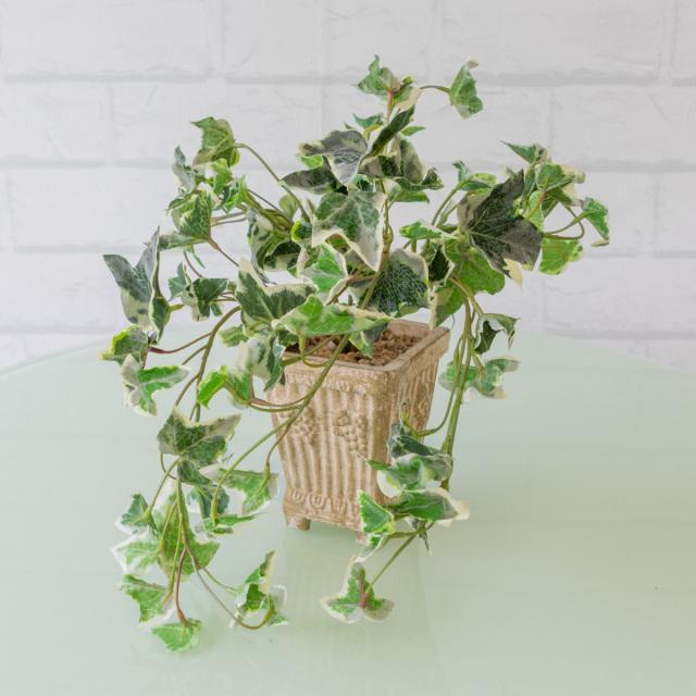 【PG113 アイビーポット【GLA-1167】/陶器】人工観葉植物 フェイクグリーン アーティフィシャルグリーン 造花 通販 装飾 観葉樹 人工樹木  インテリア 玄関 リビング おしゃれ テーブルサイズ