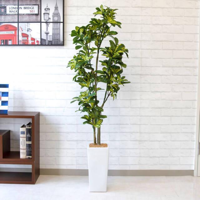 【PG135 カポックツリー H約135cm /セラミック鉢】人工観葉植物 フェイクグリーン アーティフィシャルグリーン 造花 通販 装飾 観葉樹 人工樹木  インテリア 玄関 リビング おしゃれ