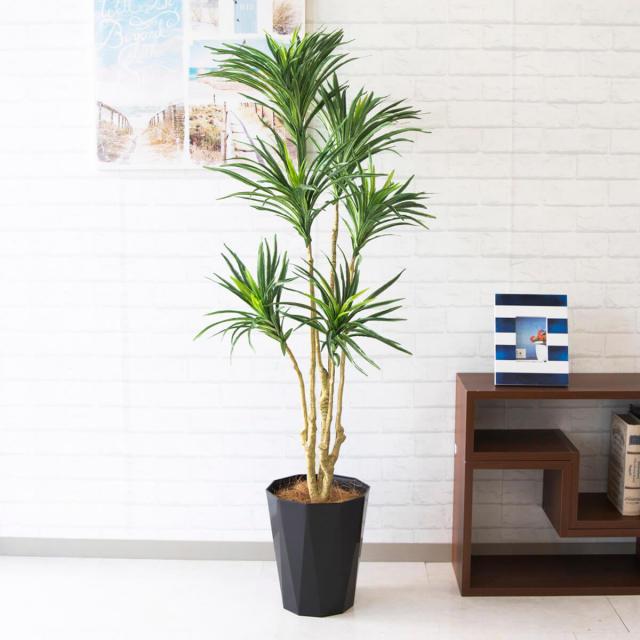 【PG136 ユッカ H約150cm /ポリプロピレン鉢】人工観葉植物 造花 フェイクグリーンインテリア アーティフィシャルグリーン