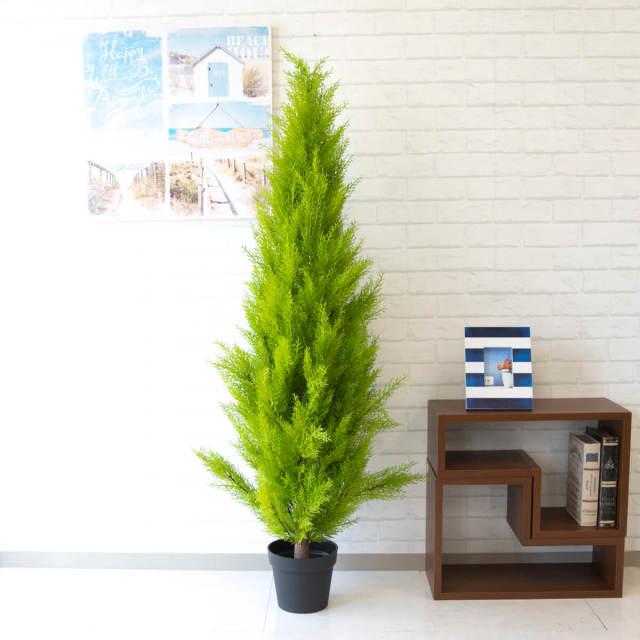 【PG140 ゴールドクレスト H約150cm /ポリプロピレン鉢】人工観葉植物 造花 フェイクグリーンインテリア アーティフィシャルグリーン