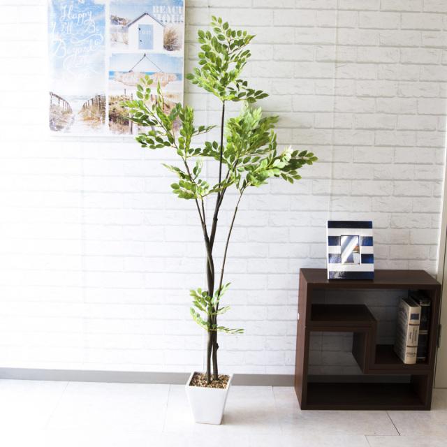 【PG144 トネリコツリー H155cm 【GLA-1387】/陶器鉢】人工観葉植物 造花 フェイクグリーンインテリア アーティフィシャルグリーン
