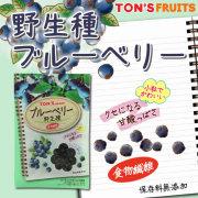 TNSF 野生種ブルーベリー 40g