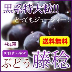全国送料無料(4kg箱)藤稔(大峰) ぶどう
