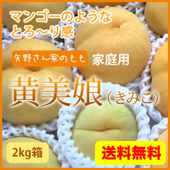 全国送料無料 家庭用 黄美娘2kg 黄金桃