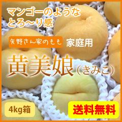 全国送料無料 家庭用 黄美娘4kg 黄金桃