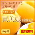 全国送料無料 黄美娘4kg 黄金桃