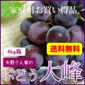 ぶどう藤稔(大峰)4kg箱 家庭用 送料無料