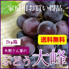 ぶどう藤稔(大峰)2kg箱 家庭用 送料無料