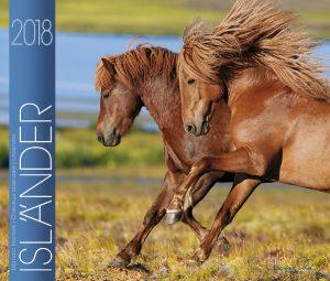 BOISELLE カレンダー2018 Mサイズ 24 Icelander (アイスランダー)