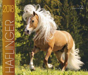 BOISELLE カレンダー2018 Mサイズ Haflinger (ハフリンガー)
