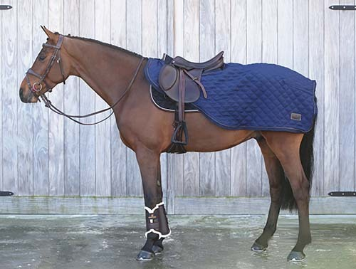 KENTUCKY Riding Rug 160g