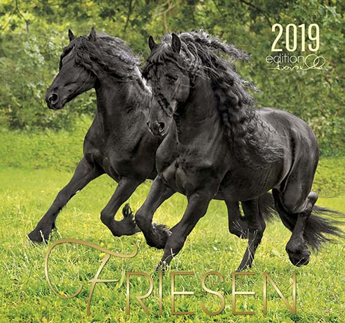 BOISELLE カレンダー2019 Lサイズ Friesian (フリージアン)