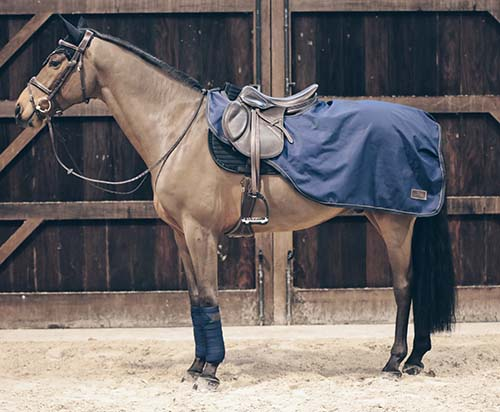 KENTUCKY Riding Rug All Weather 160g