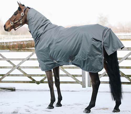 KENTUCKY Turnout Rug All Weather 160g ネック付き