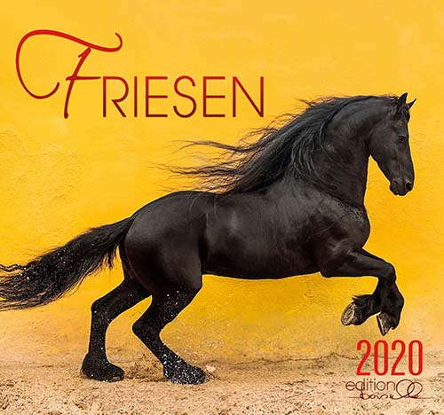 BOISELLE カレンダー2020 Lサイズ Friesian (フリージアン)